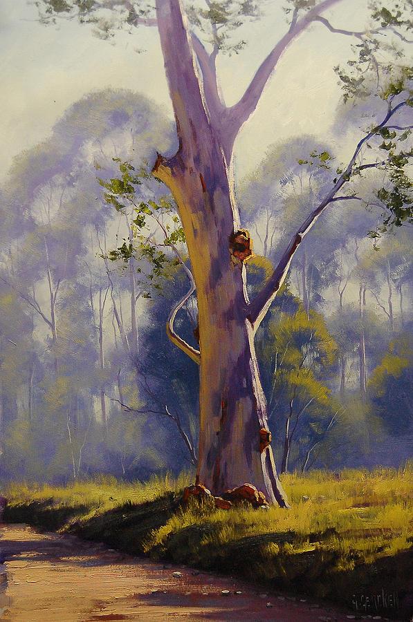 Megalong Australia  City new picture : Megalong Valley Gum Nsw Australia by Graham Gercken