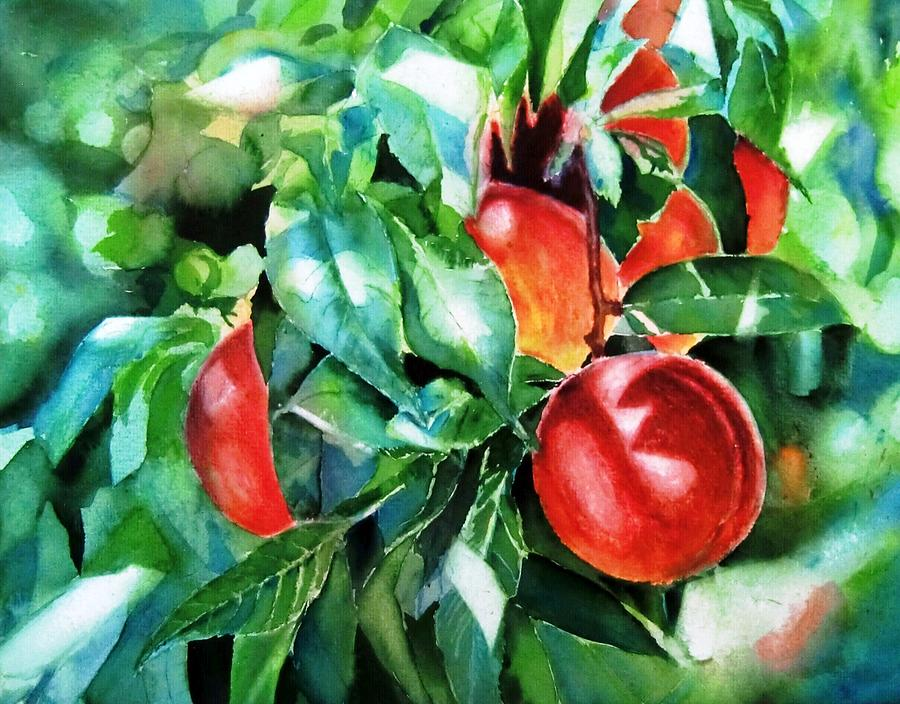 Peach Painting - Melocotones- Peaches by Maria Balcells