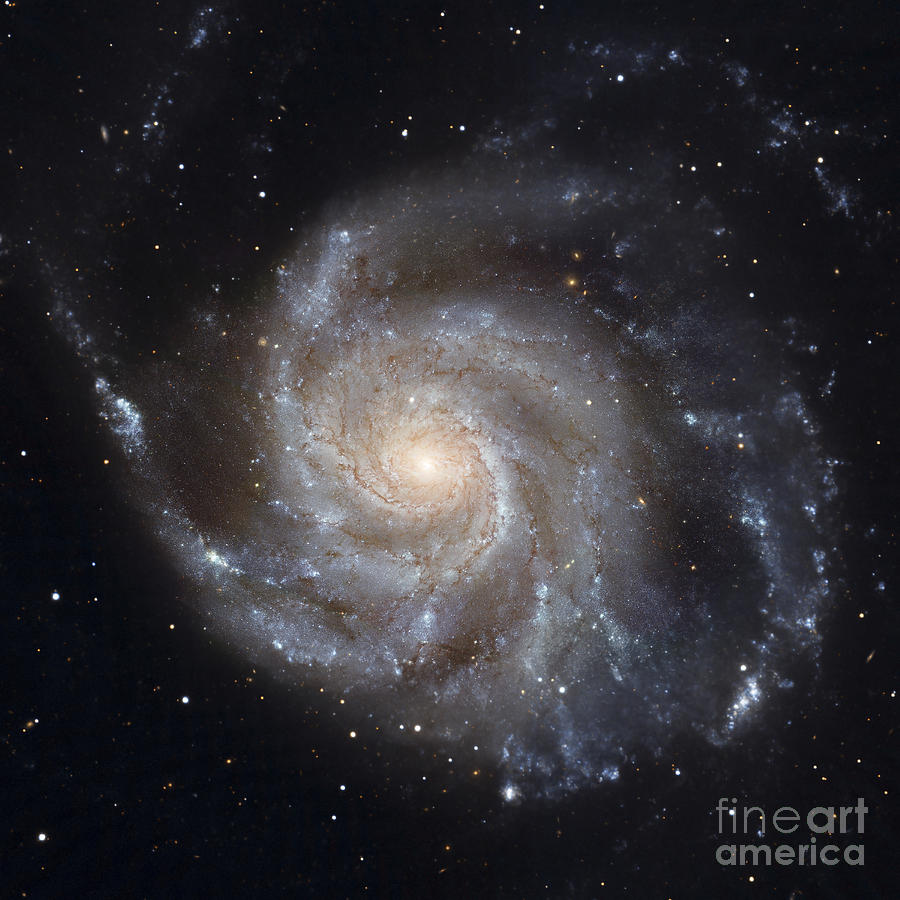 Galaxy Photograph - Messier 101, The Pinwheel Galaxy by Stocktrek Images