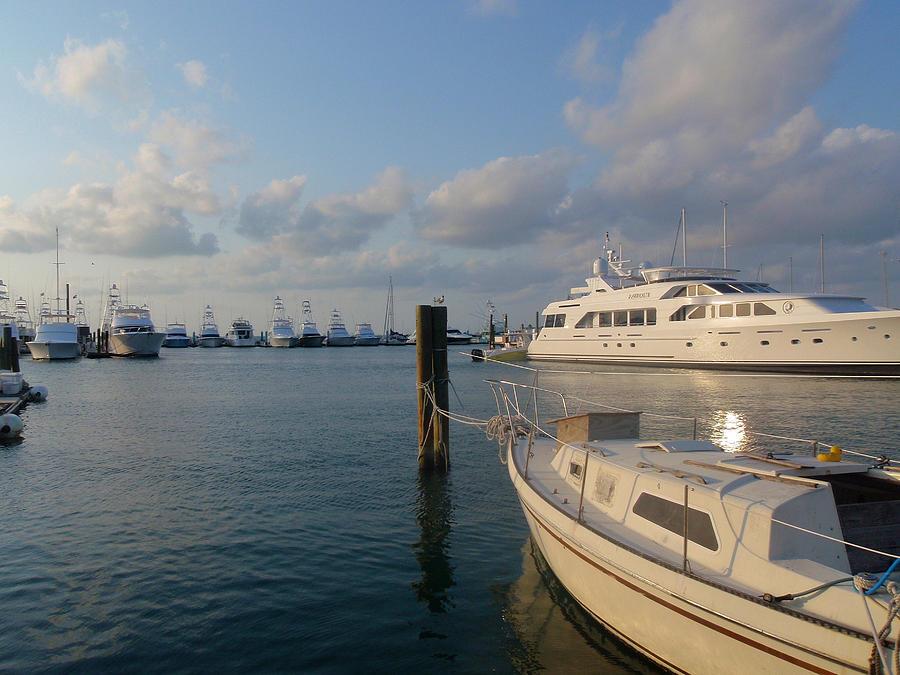 Miami Harbor Photograph