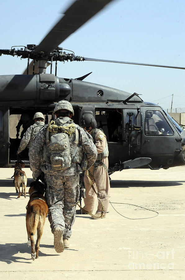 Helicopter Photograph - Military Working Dog Handlers Board by Stocktrek Images