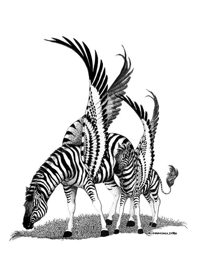 Zebra Drawing - Mirage  Detail by Caroline Czelatko