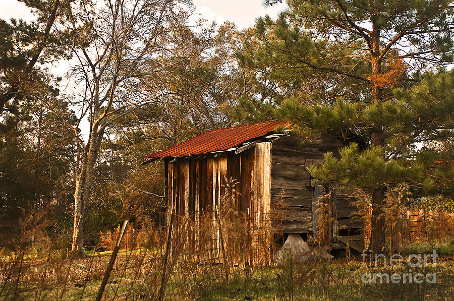 Nature Photograph - Mississippi Corn Crib by Tamyra Ayles