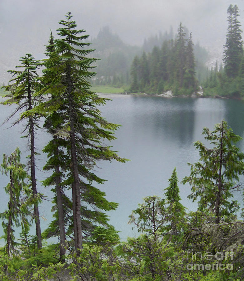 Mist At Snow Lake Photograph
