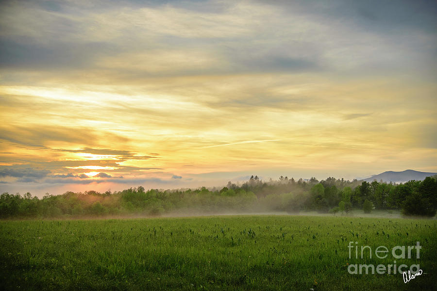 Misty Evening Photograph