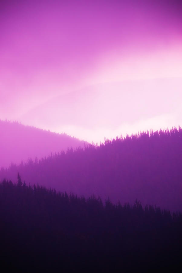 Misty Morning Mountains - Magenta Photograph