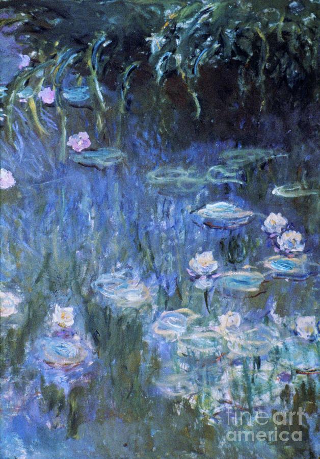 19th Century Photograph - Monet: Waterlilies by Granger