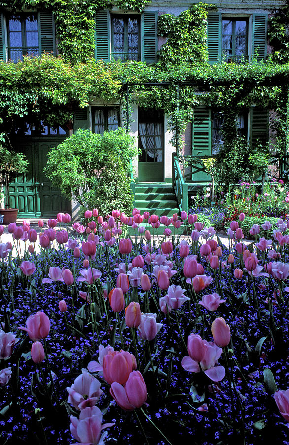 Tulips Photograph - Monets House With Tulips by Kathy Yates
