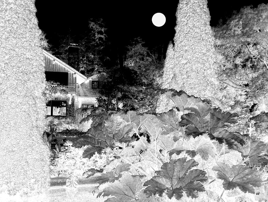 Moon Over Stanley Park Digital Art