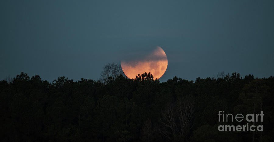Moon Scape Photograph