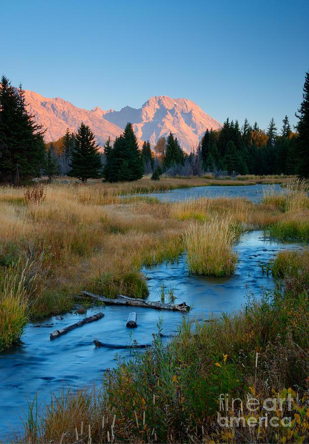 Mount Moran Photograph - Moran Morning by Idaho Scenic Images Linda Lantzy
