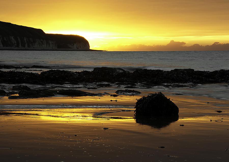 Background Photograph - Morning Beach by Svetlana Sewell