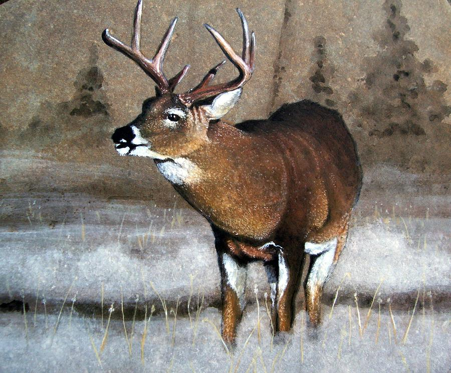 Animal Painting - Morning Fog by Stan White