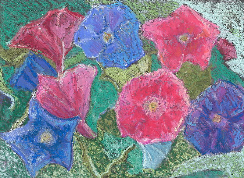 Flowers Pink Blue Morning Glory Floral Hillaryart Pastel - Morning Glories by Hillary McAllister