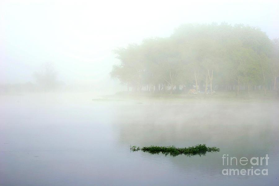 Morning On The Parana Photograph
