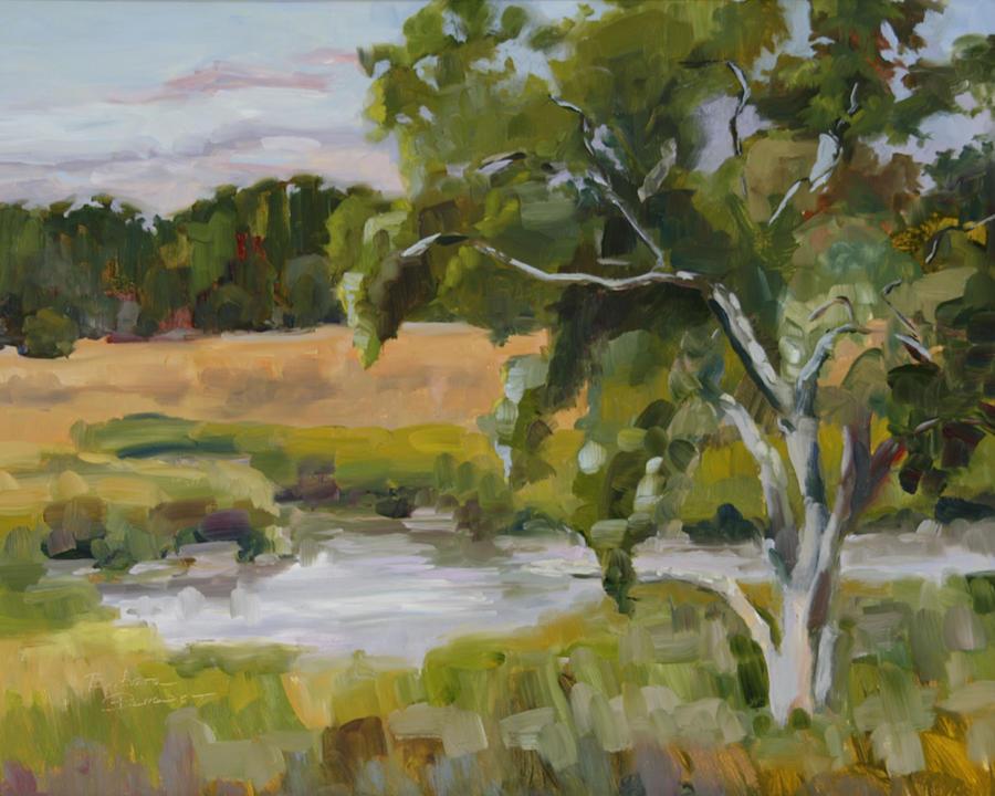 Impressionism Painting - Morning Transition by Barbara Benedict Jones