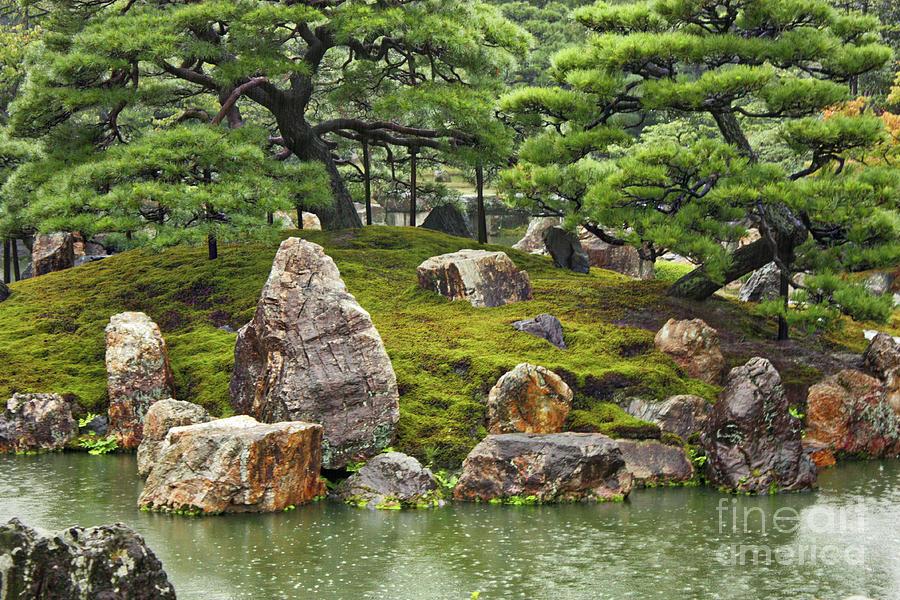 Japanese Garden Photograph - Mossy Japanese Garden by Carol Groenen