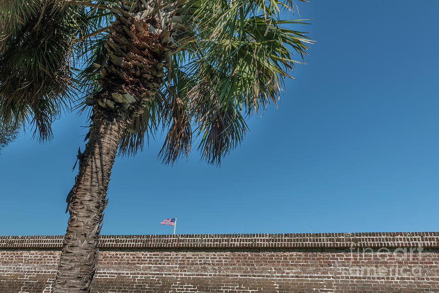 Moultrie Brick Wall Photograph