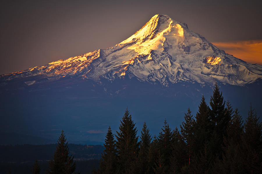 Cascade Mountain Range Photograph - Mount Hood From The North by Ed Book