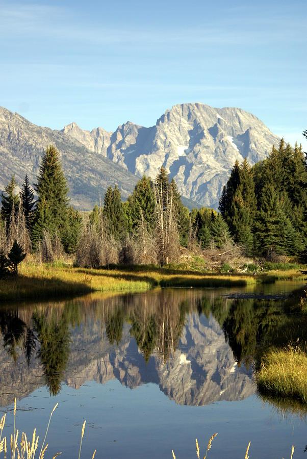 Grand Teton National Park Photograph - Mount Moran Reflections by Marty Koch