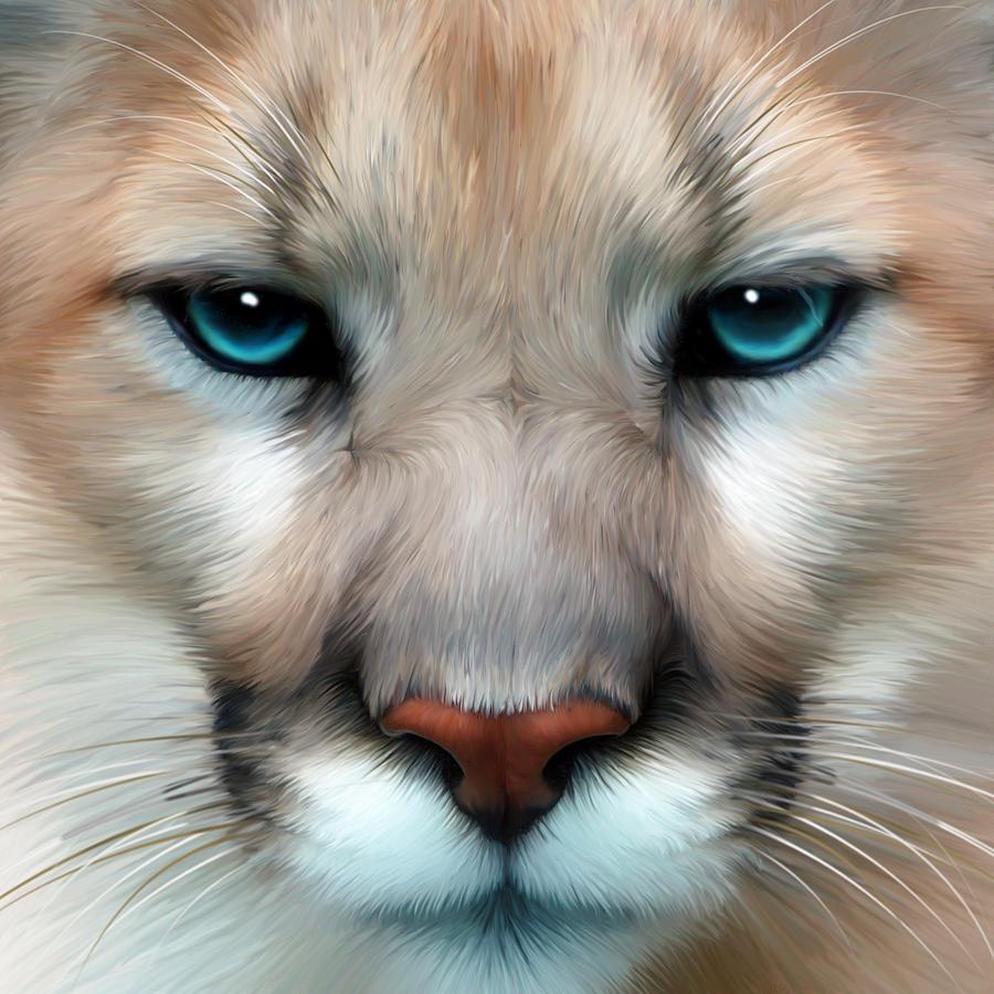Cougars Digital Art - Mountain Lion by Julie L Hoddinott
