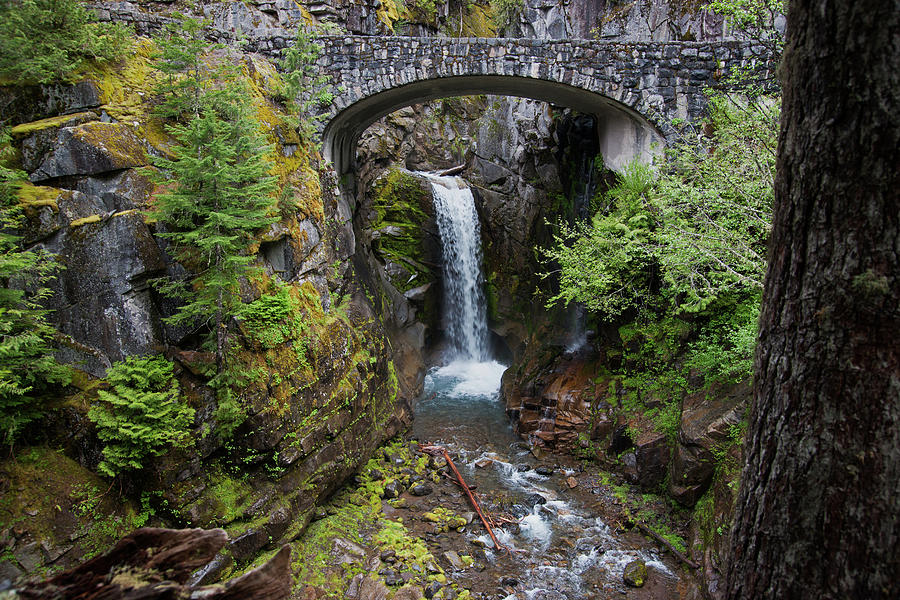 Christine Falls Mt. Rainier Photograph