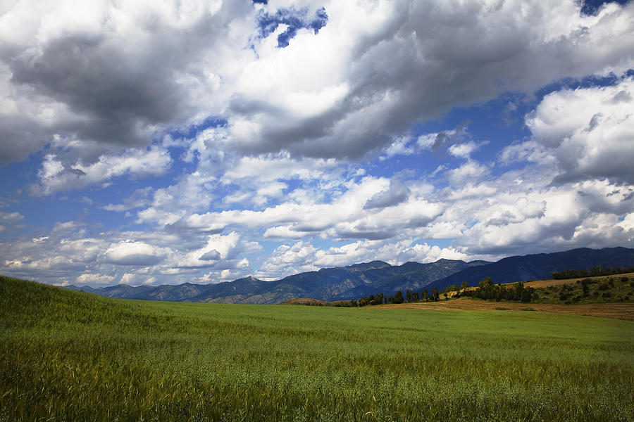 Blue Clean Clear Clouds Color Colorful Country Field Flora Freed Photograph - Mountainfarm by Mark Smith