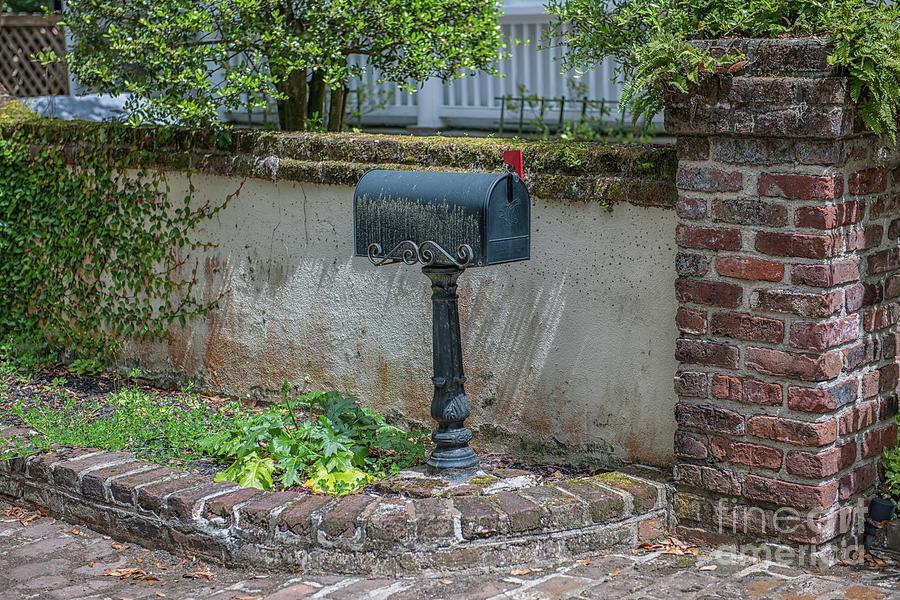 Mr. Postman Photograph