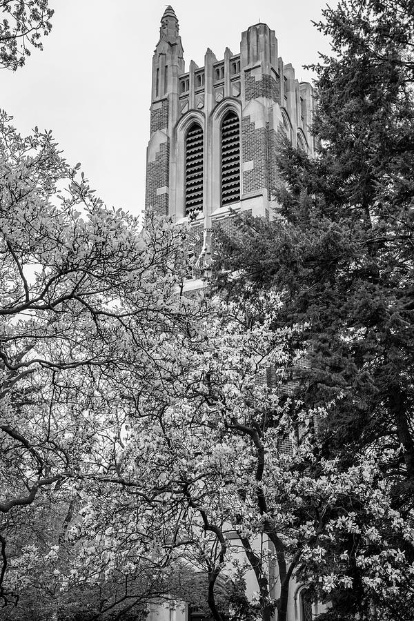 Msu Beaumont Tower Black And White 3 Photograph By John Mcgraw