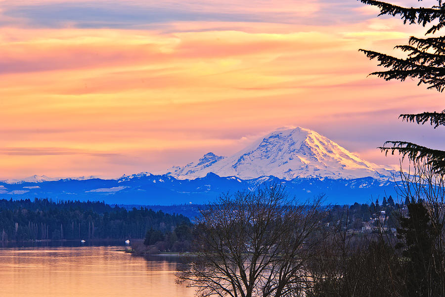 New Years Day Photograph - Mt Rainier From Lake Washington by Alvin Kroon