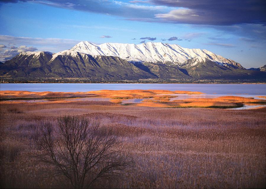 Marsh Photograph - Mt. Timpanogos And Utah Lake by Utah Images