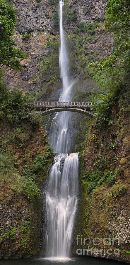 Waterfall Photograph - Multnomah Falls - Columbia River Gorge by Sandra Bronstein