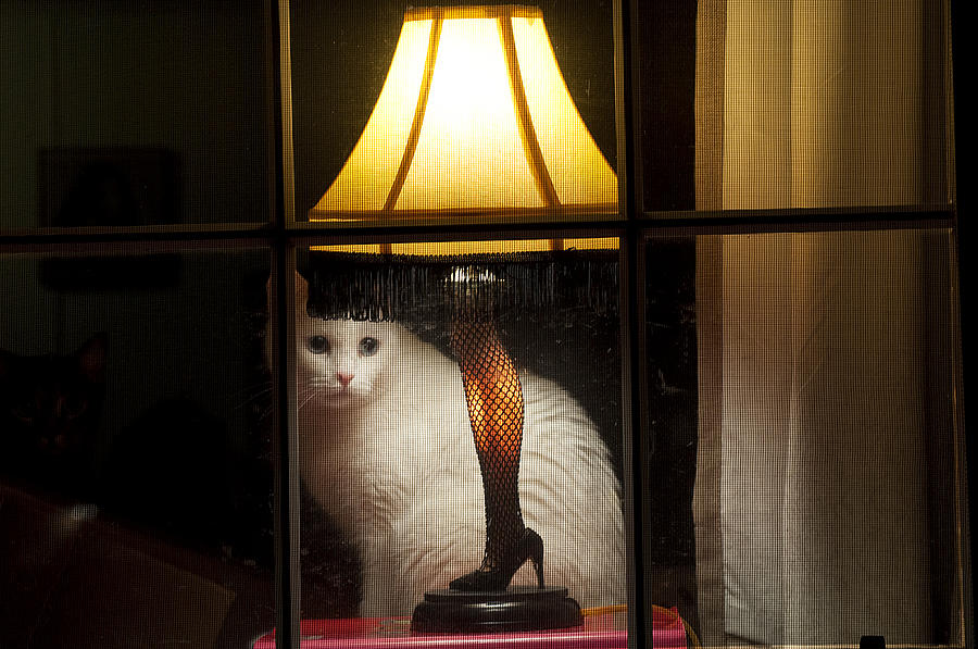 Leg Lamp Photograph - My Major Award by Kenneth Albin