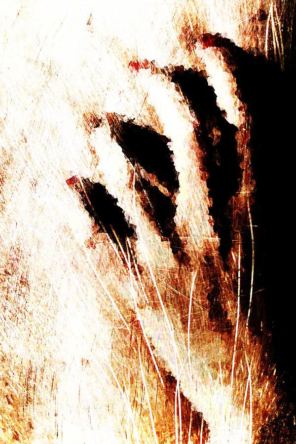Clapperclaw Digital Art - Nails by Andrea Barbieri