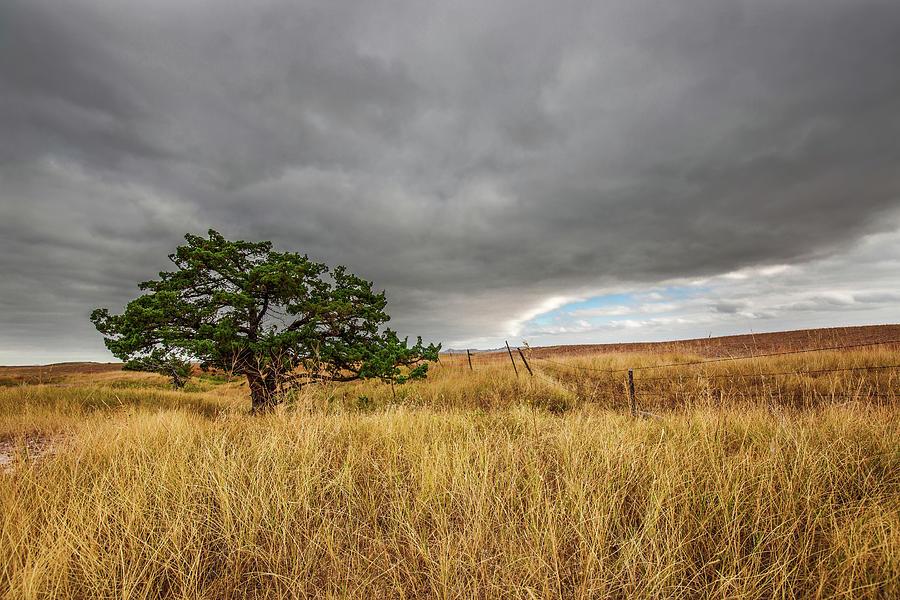 DAKOTA PHOTO OF NATURE