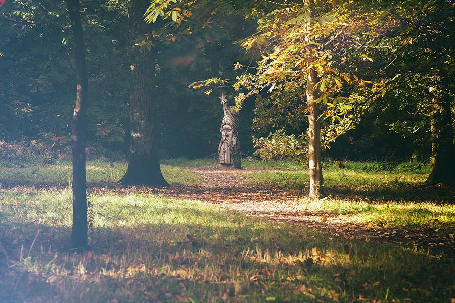 Natures Wizard Photograph
