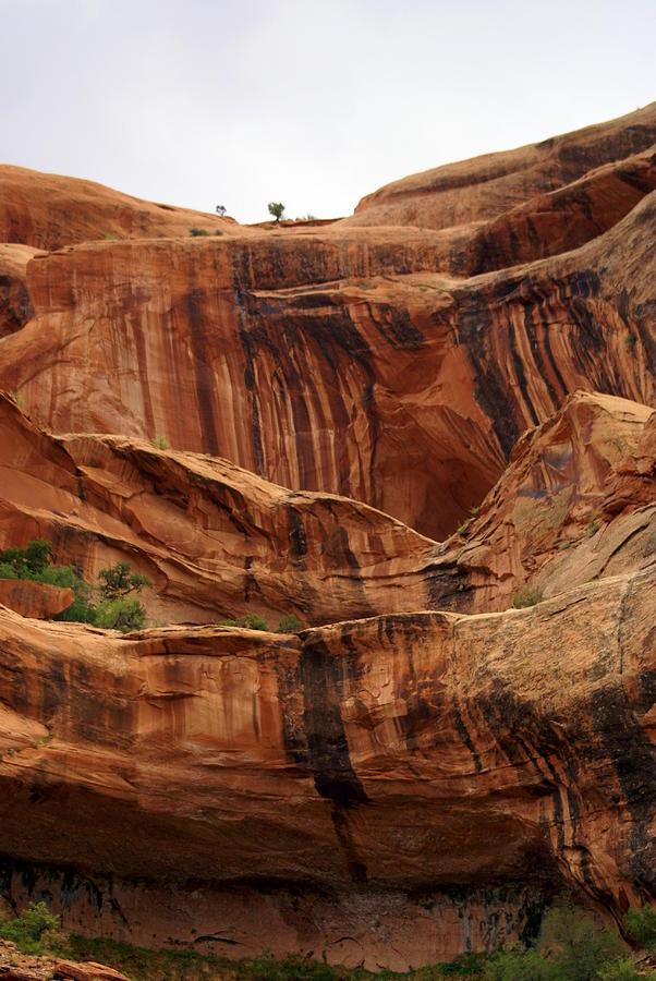 Canyon Photograph - Near Moab 1 by Marty Koch