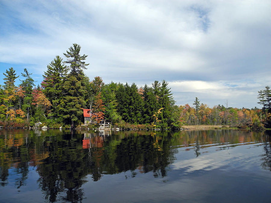 Island Lake Water Maine Autumn Seasonal Trees Woods Recreation Nature Beauty Peace Serenity Solitude Texture Boating Color Sunlight Earth Environment Landscape Background Scenic Light Sky Clouds Reflections Sensuous Country Patterns Panorama Expanse Wild Unspoiled Inspiration Tranquil Wilderness Tactile Idyllic Pastoral Outdoors Inspirational Meditative Peaceful Travel Hiking Canoeing  Photograph - Nestled On The Far Shore by Lynda Lehmann