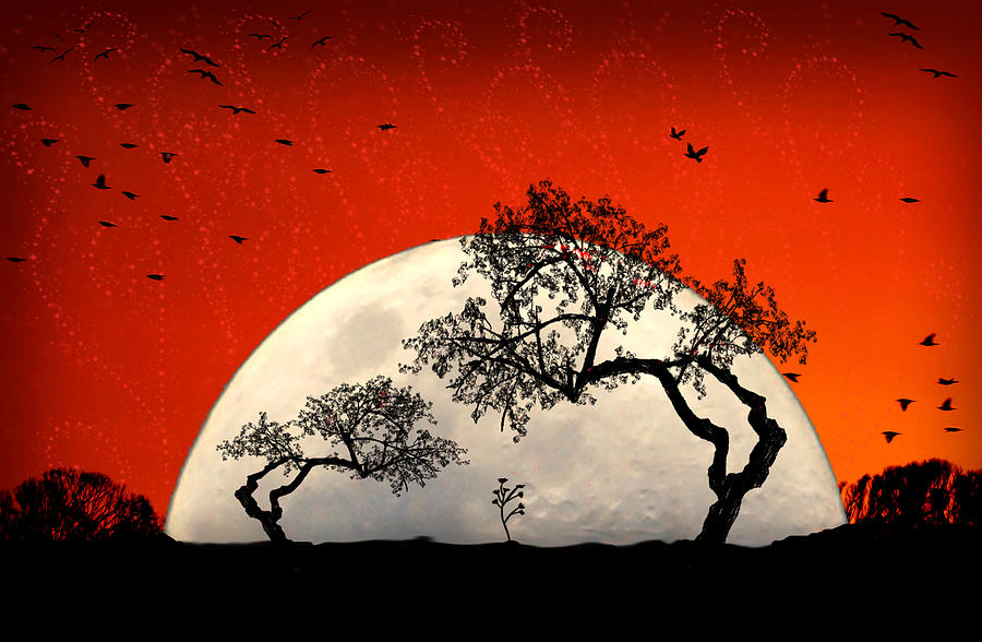 Moon Digital Art - New Growth New Hope by Holly Kempe