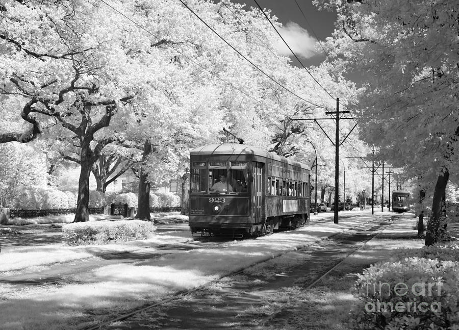 New Orleans: Streetcar Photograph by Granger