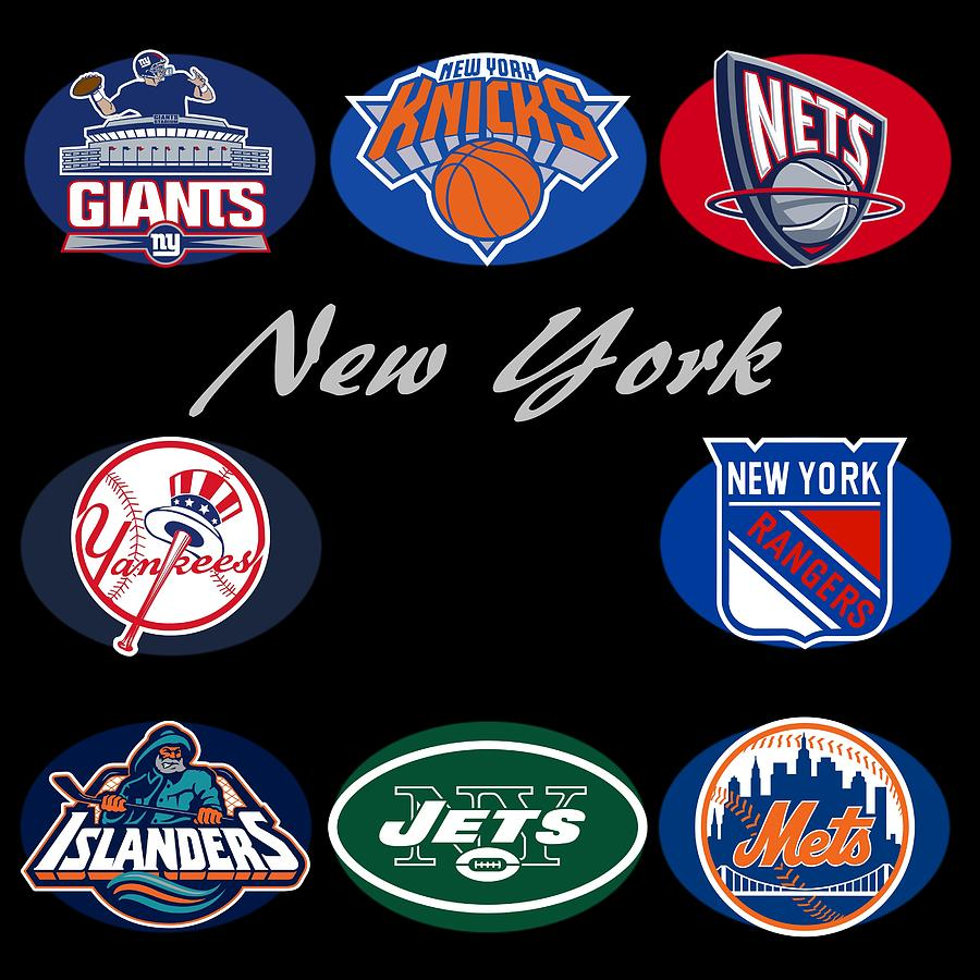 Professional sports team logos