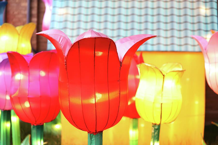 New York State Chinese Lantern Festival 40 Photograph