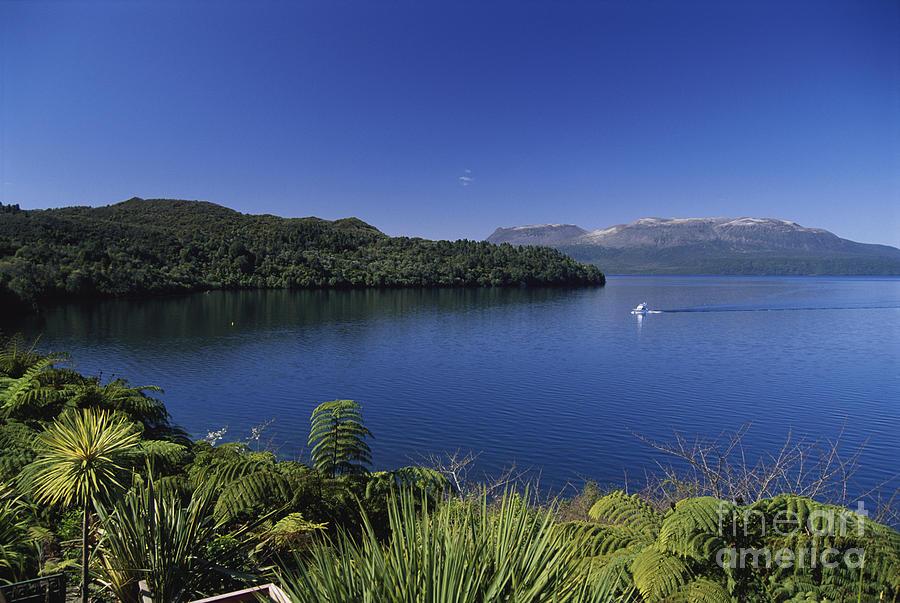 Beautiful Photograph - New Zealand, Rotorua by Greg Vaughn - Printscapes