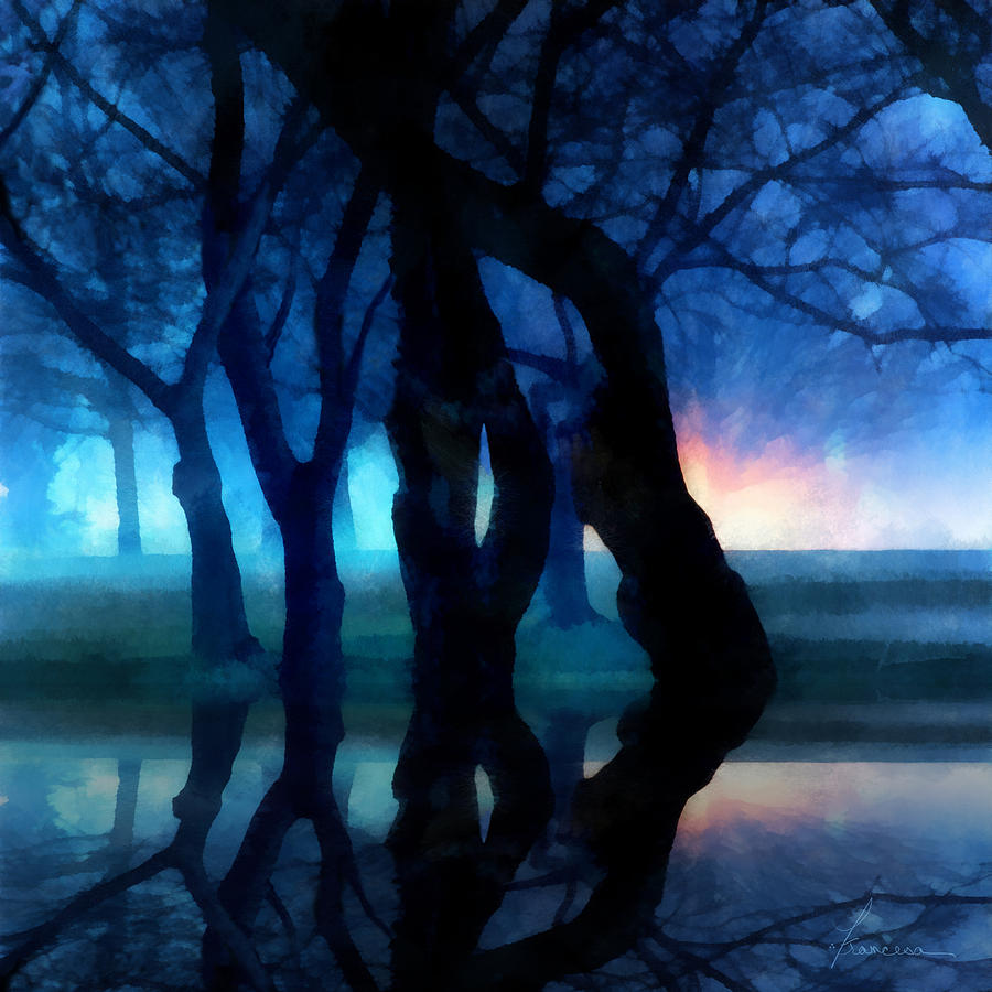 Fog Night Glowing Glow Trees City Park Creepy Dark Evening Silhouette Branches Reflections Digital Art - Night Fog In A City Park by Francesa Miller