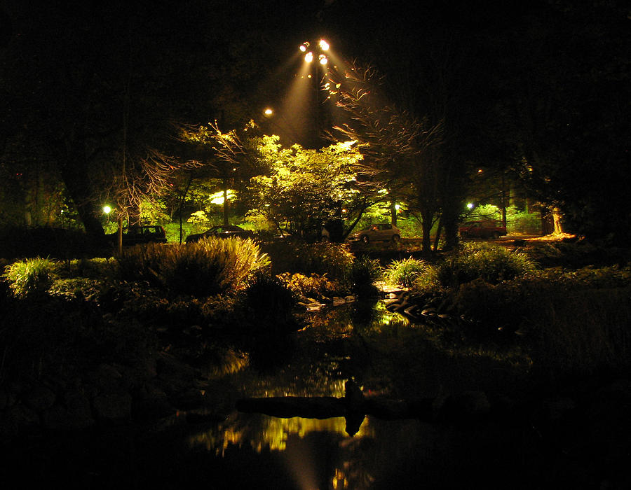 Malmo Photograph - Night Garden by Art Nomad Sandra  Hansen