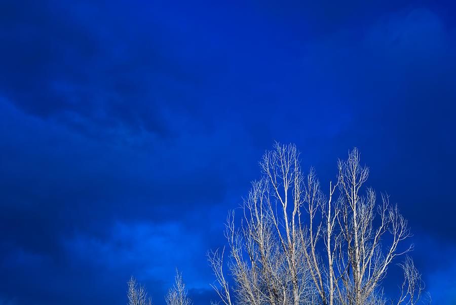 Night Photograph - Night Sky by Steve Gadomski