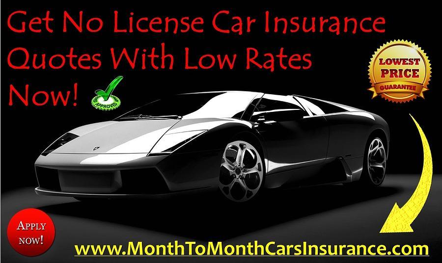 no license car insurance photograph by lisa brown. Black Bedroom Furniture Sets. Home Design Ideas