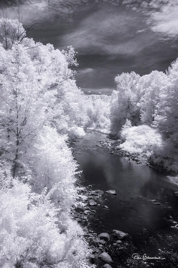 North Branch, Deerfield River 4657 Photograph