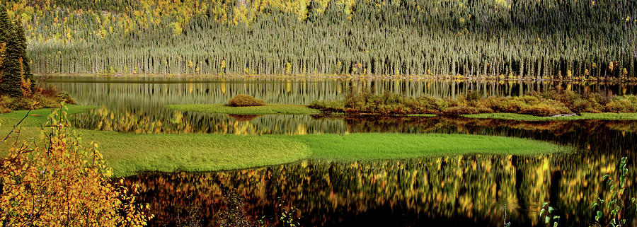 Digital Art - Northern Lake by Mark Duffy