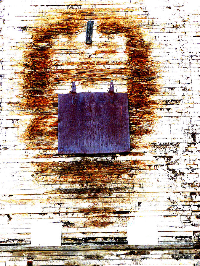 Worn Photograph - Nose Job  by Lin Haring